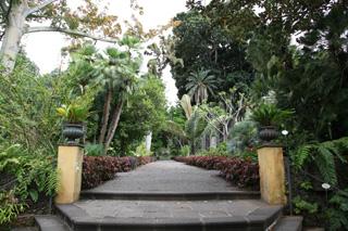 Ботанический сад (Jardín botánico), Пуэрто-де-ла-Крус